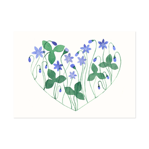 Postcard Hepatica Heart
