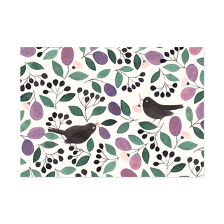 Postcard Blackbirds